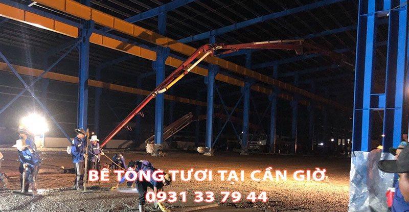 Cong-Ty-Cung-Cap-Be-Tong-Tuoi-Tai-Xa-Long-Hoa-Huyen-Can-Gio (1)