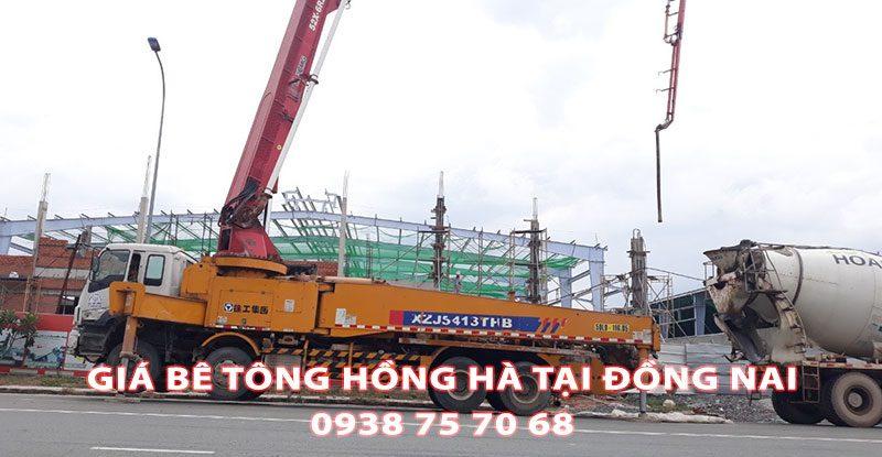 Bang-Gia-Be-Tong-Hong-Ha-Tai-Dong-Nai (1)