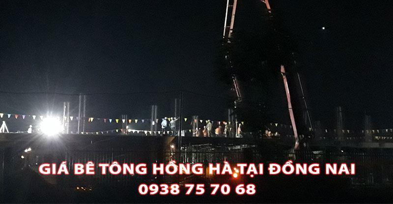 Bang-Gia-Be-Tong-Hong-Ha-Tai-Dong-Nai (3)