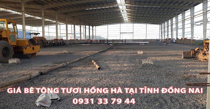 Bang-Gia-Be-Tong-Tuoi-Hong-Ha-Tai-Tinh-Dong-Nai (1)
