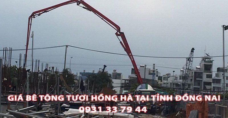 Bang-Gia-Be-Tong-Tuoi-Hong-Ha-Tai-Tinh-Dong-Nai (2)