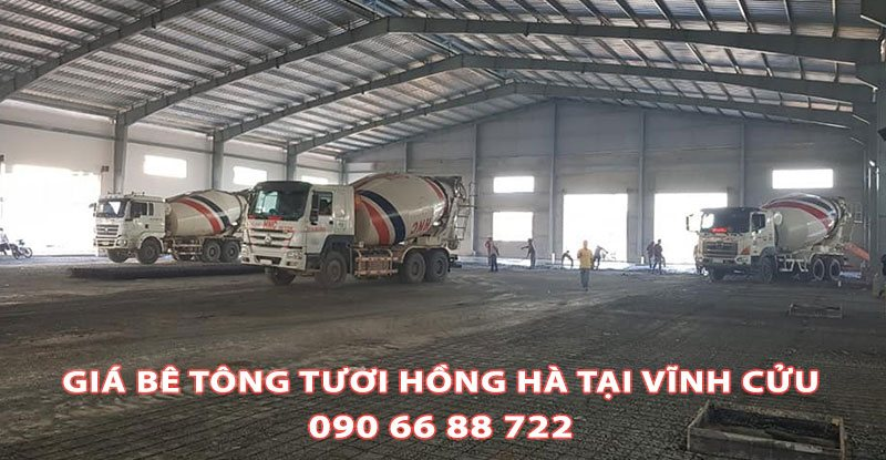Bang-Gia-Be-Tong-Tuoi-Hong-Ha-Tai-Vinh-Cuu (1)