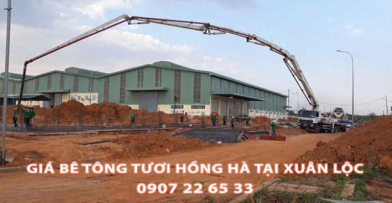 Bang-Gia-Be-Tong-Tuoi-Hong-Ha-Tai-Xuan-Loc-Moi-Nhat (1)