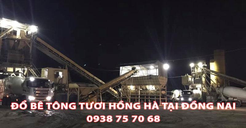 Do-Be-Tong-Tuoi-Hong-Ha-Tai-Dong-Nai (1)