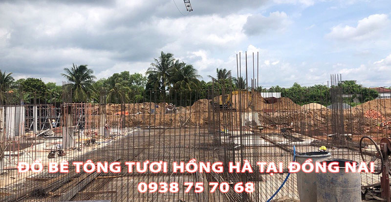 Do-Be-Tong-Tuoi-Hong-Ha-Tai-Dong-Nai (2)