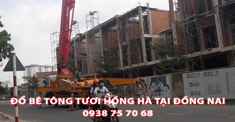 Do-Be-Tong-Tuoi-Hong-Ha-Tai-Dong-Nai (3)