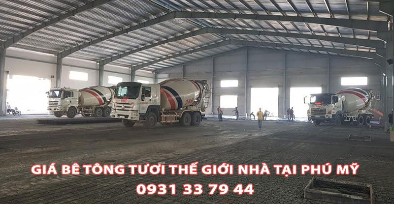 Bang-Gia-Be-Tong-Tuoi-The-Gioi-Nha-Phu-My-Tai-Nha (2)