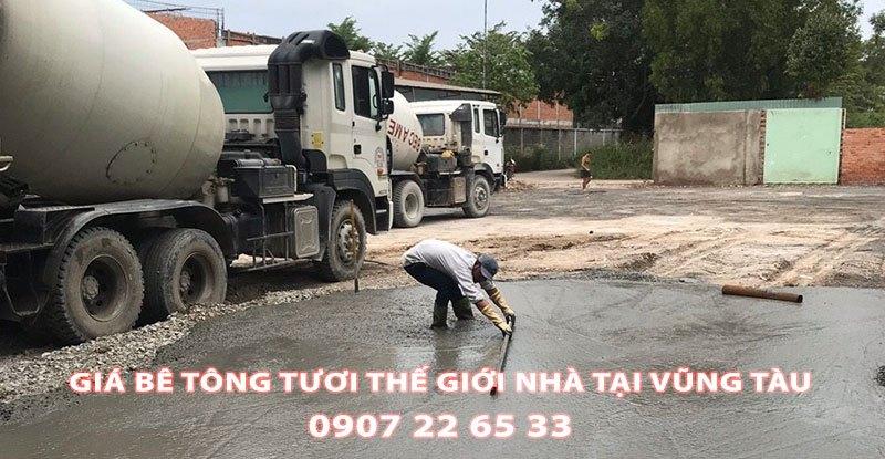 Bang-Gia-Be-Tong-Tuoi-The-Gioi-Nha-Tai-Vung-Tau-Moi-Nhat (1)