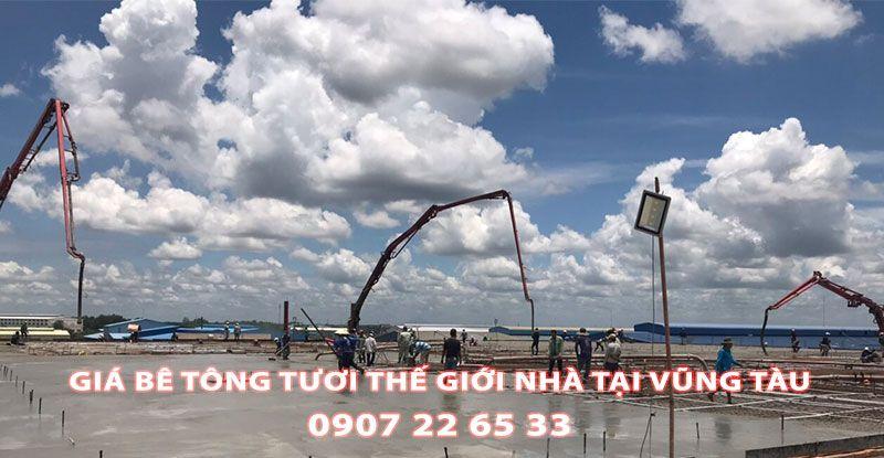 Bang-Gia-Be-Tong-Tuoi-The-Gioi-Nha-Tai-Vung-Tau-Moi-Nhat (2)